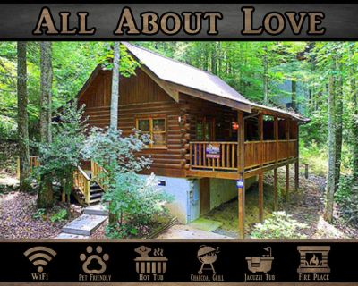 All About Love } Wifi / Hot Tub / Pet Friendly / Right off Pigeon Forge Parkway - Pigeon Forge