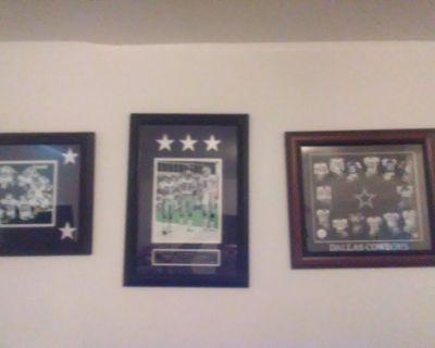 Dallas Cowboys collector 20 x 16