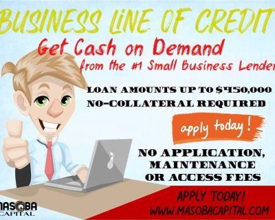 Business line of credit up to $450,000