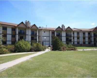 193 Victor Lewis Dr #4118, Winnipeg, MB R3P 2A3 2 Bedroom Apartment