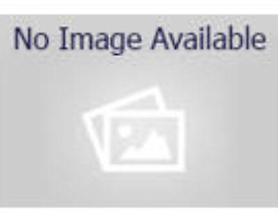 Adopt ARF a Labrador Retriever, Border Collie