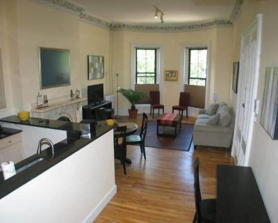 Large and grand parlor 2 bedroom in the South End by Copley Square - Columbus