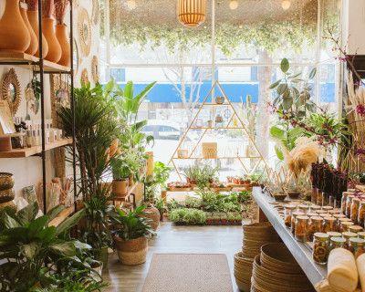 Studio City Plant and Flower Shop with Lush Interior, Studio City, CA