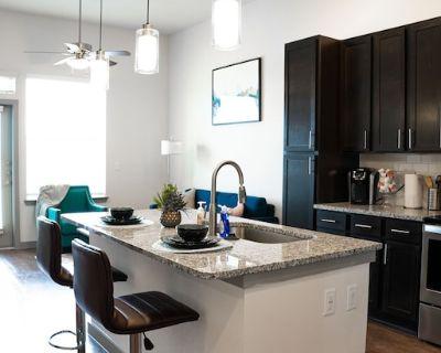 1Bedroom Luxury Apartment near Texas Medical Center, NRG Park, Downtown Houston. - Central Southwest