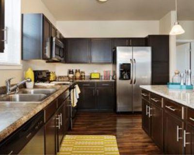 4052 Albion Street #201, Denver, CO 80216 1 Bedroom Apartment