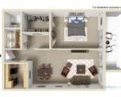 La Vida Buena Apartments - The Madrid