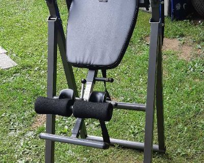 Fitness Reality Inversion Table