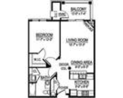 Georgetown Square Apartments - GTS Virginian I - 1 Bed, 1 Bath