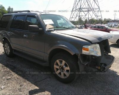 Salvage Gray 2010 Ford Expedition