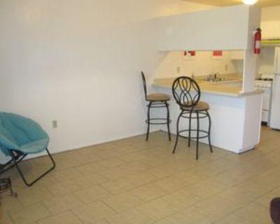 417 Harvard Dr Se #5, Albuquerque, NM 87106 1 Bedroom Apartment