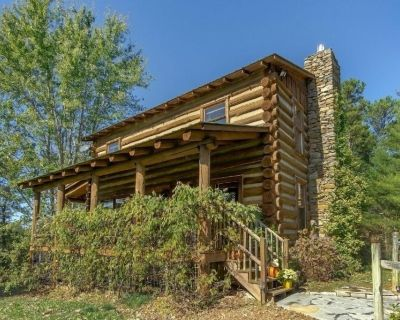 Fox and Crow Cabin I Pet Friendly Log Cabin I Less than 10 miles to Asheville - French Broad