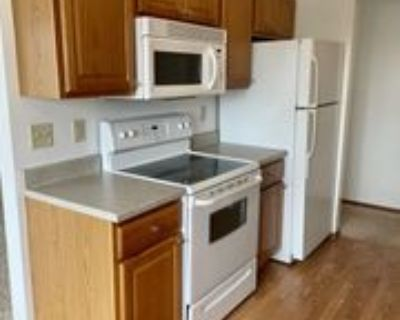 3215 South Western Avenue - 12 #12, Sioux Falls, SD 57105 1 Bedroom Apartment