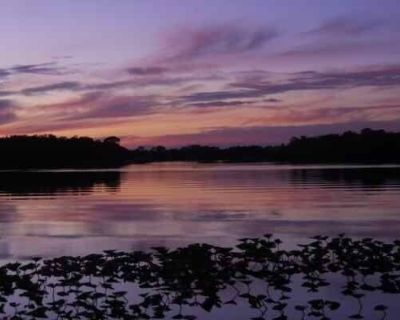Tranquility on Lake Josephine - Highlands County