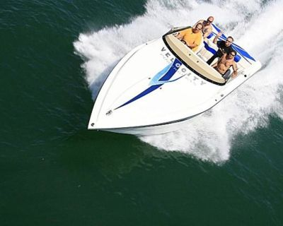2021 Velocity Powerboats 260 VR