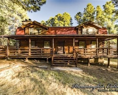 BJ's Log Cabin: 'Escape to Paul's favorite place!' With hot tub. - Ruidoso