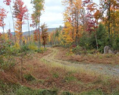 Plot For Sale In Sweet Valley, Pennsylvania