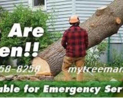 🔖🔥Tree Cut & Stump Removal Service's (678)558-8258 www.mytreeman.com