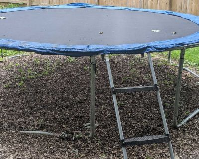 14 (I think) foot trampoline with ladder