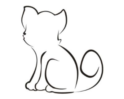 Santino - Domestic Shorthair - Kitten Male