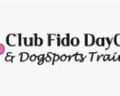 Club Fido Daycare and Dog Sports Training