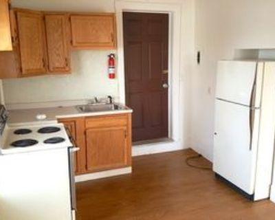 303 Vienna St, Palmyra, NY 14522 1 Bedroom House