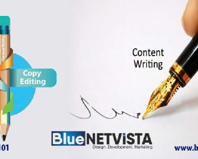 Get Reasonable Website Content Writing Services