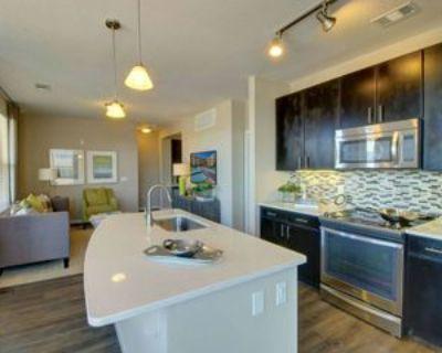 2455 South Ash Street #2, Denver, CO 80222 3 Bedroom Apartment