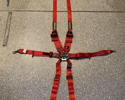 Schroth GT3 Profi 6 Point Harnesses