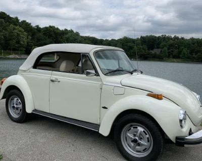 1977 beetle convertible (champagne edition)