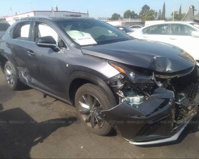 Salvage Gray 2019 Lexus Nx