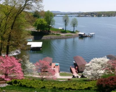 Kathy's Place - Magnificent View - Great Location - Moneta