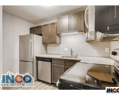 Live in the NEW!! Remodeled 2 bedroom 1 bath near the Football Stadium!