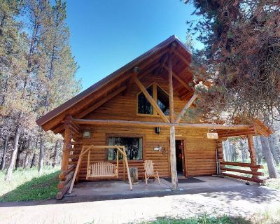 DODGE INN NESTLED IN WOODED AREA SAT TV FOOSBALL TABLE 30 MIN TO YNP BBQ GRILL DVD PLAYER - Island Park