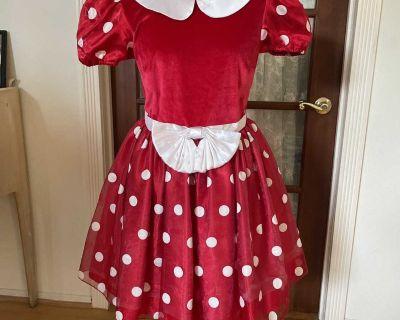 Disney Mini Mouse dress.
