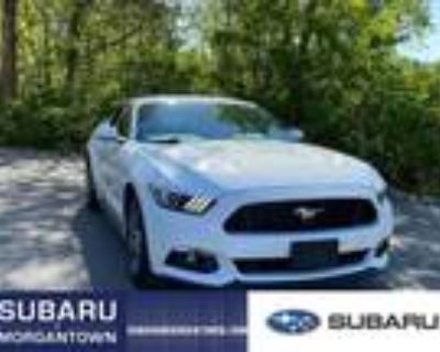 2015 Ford Mustang White, 4K miles