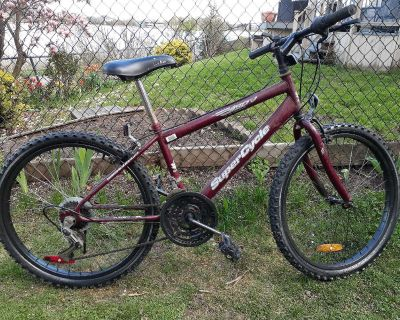 24 inch Mountain Bike - Supercycle