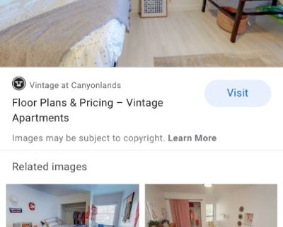 Shared apartment vintage canyonlands