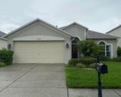 10722 Firebrick Ct, Trinity, FL 34655 4 Bedroom House