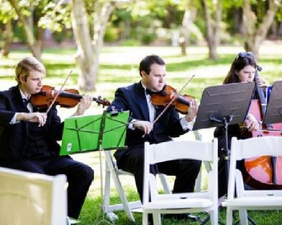 Need a Wedding String Quartet, Trio, or Duet? 15 years of experience