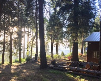 Unique Vintage Cabin in the woods with mountain, lake, forest, city, and stars view., Cedarpines Park, CA