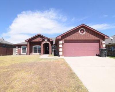 3603 Dewitt County Ct, Killeen, TX 76549 4 Bedroom House