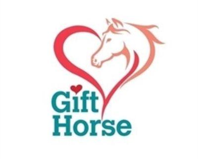 Gift Horse Estate Sale Rita Tanch