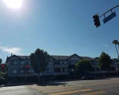 Woodman Ave, Los Angeles, CA 91401 1 Bedroom Apartment
