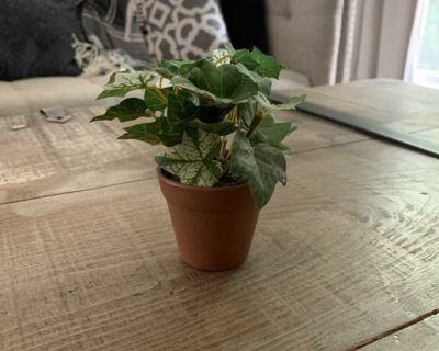 Small faux ivy plant approx 4 1/2 tall