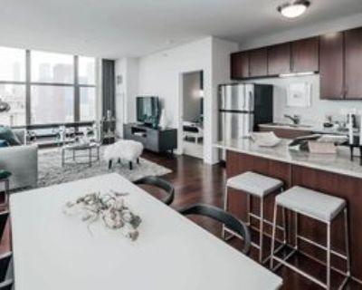 5 East 14th Place #1508, Chicago, IL 60605 2 Bedroom Condo