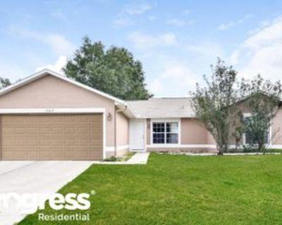 15313 Petrus Ln, Clermont, FL 34714 3 Bedroom House
