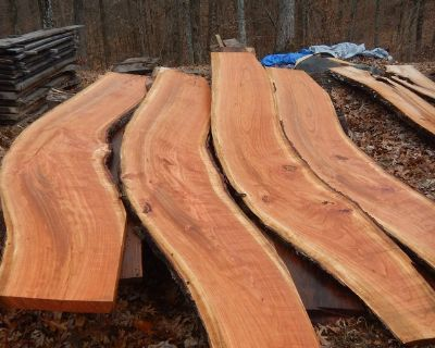 Wild cherry LIVE EDGE slabs with curves