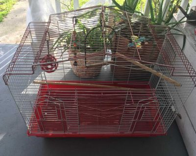 Metal bird cage with toys included, flash