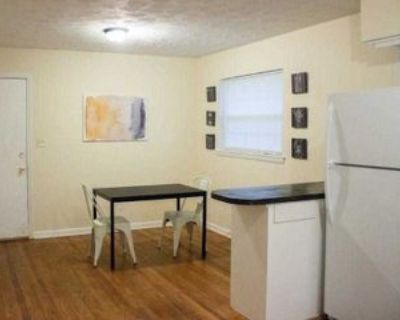 Room for Rent - a 10 minute walk to bus 9, Decatur, GA 30032 1 Bedroom House