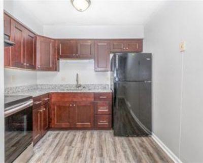 1017 Hillside Ave, Norfolk, VA 23503 1 Bedroom Apartment